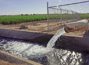 Stories about the California drought and its impact on the state's agriculture generated global media inquiries.