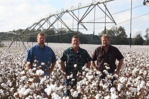 The Jordan brothers – John, Steve and Mike – are proactive in their approach to cotton production and embracing new technology.