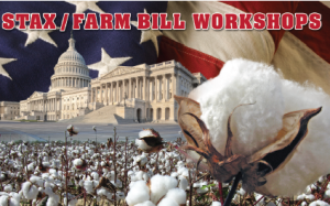 Upcoming NCC-conducted farm law educational meetings will focus on 2015 insurance options for cotton.
