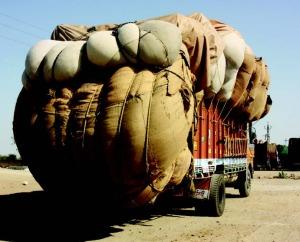 Jan 2015 Cotton Farming_Page_14_Image_0001