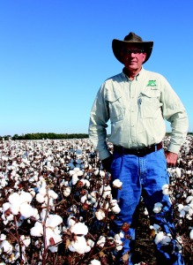Jan 2015 Cotton Farming_Page_17_Image_0001