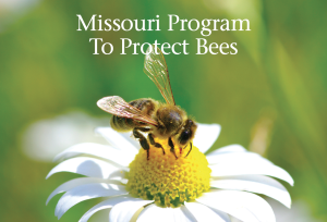 missouri program to protect bees