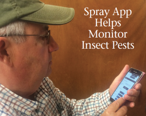 Consultant Bill Emerine of Crop Tech tries out the new spray app for monitoring insect pests in a cotton field.