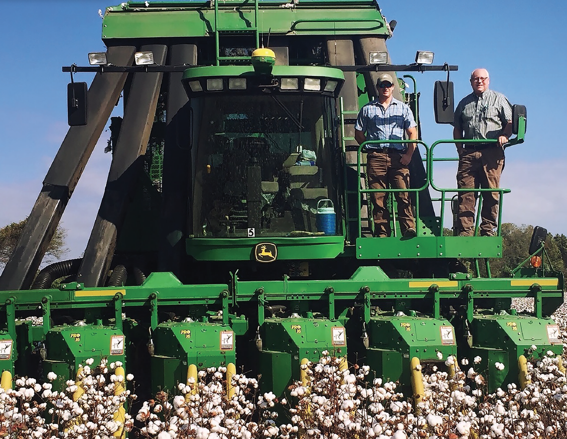 Father-and-son team, David and Sledge Taylor, agree that the new varieties in the marketplace have great yield potential and improved fiber quality.