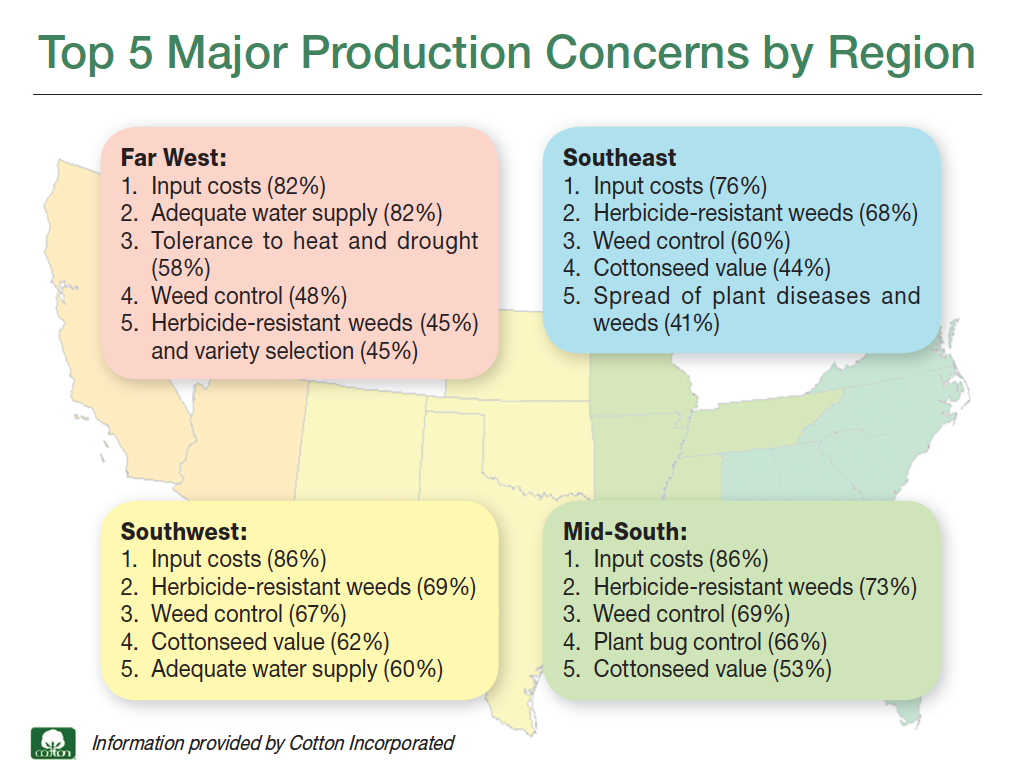 cotton-production-concerns