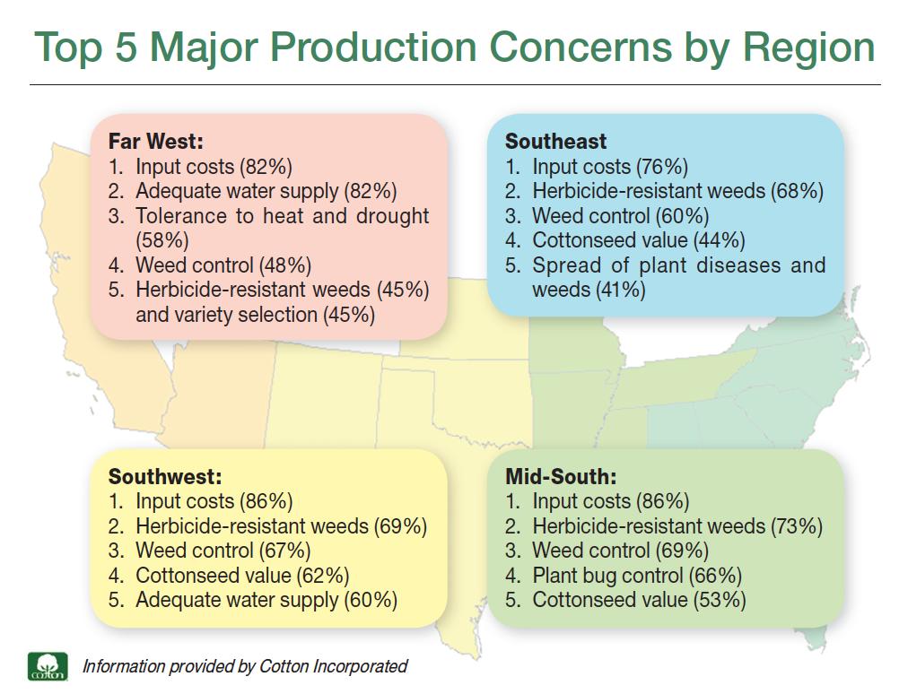 cotton-production-concerns