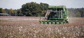 In-Season Cotton Picker Cleaning/Servicing Tips