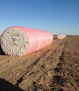L&G Farms averaged 1,309 pounds of cotton per acre on 2,000 acres in 2015.