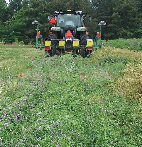 Planting Into Green Cover Crops