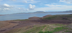 San Luis Reservoir, located south of the Sacramento-San Joaquin Delta, was designed to store water captured during winter and spring runoff for using during the summer.