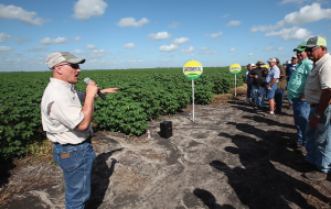 Jim Bosch, East Texas technical agronomist for Monsanto, provides farmers with background on Deltapine cotton varietal research during the recent Paul Freund Farms Field Day in Needville, Texas.