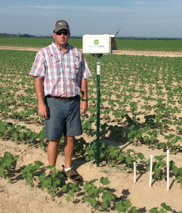 Mississippi irrigation consultant Nick King installed this Precision King telemetry unit in a cotton field to monitor soil moisture.