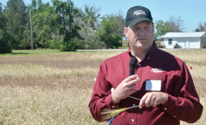 Dr. Paul DeLaune discusses cover crops at a recent field day on the Texas A&M AgriLife Research station south of Chillicothe.