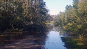 Floodwaters still haven't fully receded in some areas of hard-hit Horry County. Image Credit: William Hardee / Clemson University