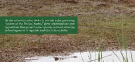 Farmers Seek Clarity In Rewrite Of WOTUS Rule