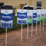 fibermax cotton varieties