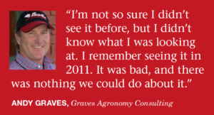 Andy Graves, Mississippi consultant