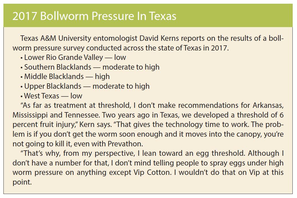 2017 Texas bollworm pressure