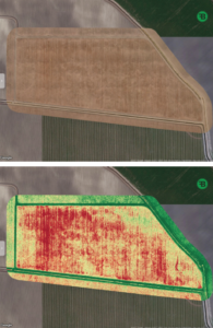 aerial imaging of cotton fields