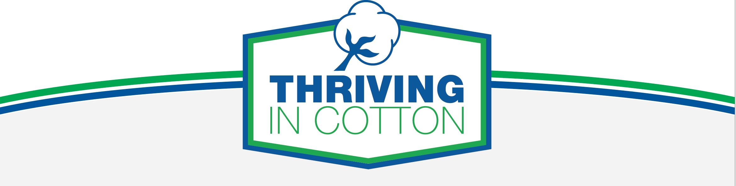 Thriving In Cotton header