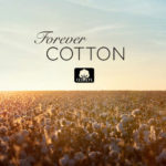 forever cotton