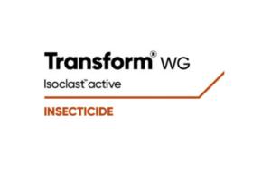 new Transform logo