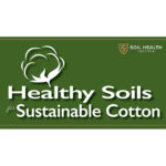 healthy soils for sustainable cotton logo