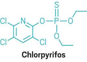 chlorpyrifos