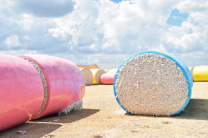 cotton bales, texas