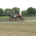 spraying dicamba