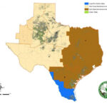 Texas bollweevil map