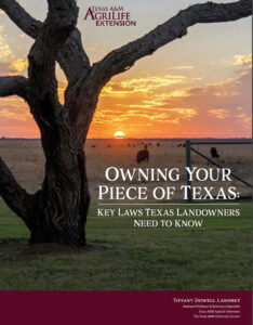 owning your piece of texas