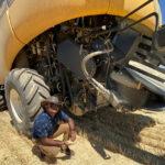 seed destructor
